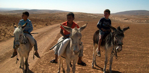 kids_on_donkeys_600_px